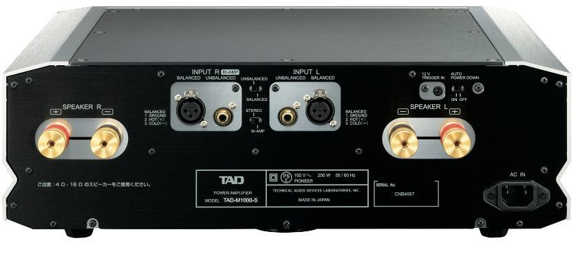TAD Evolution Series Speaker System E1TX and Power Amplifier M1000