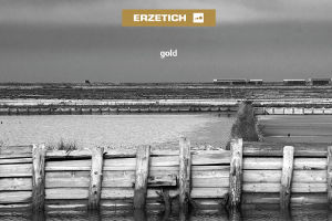 ERZETICH gold cd cover